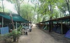 Camping Calema